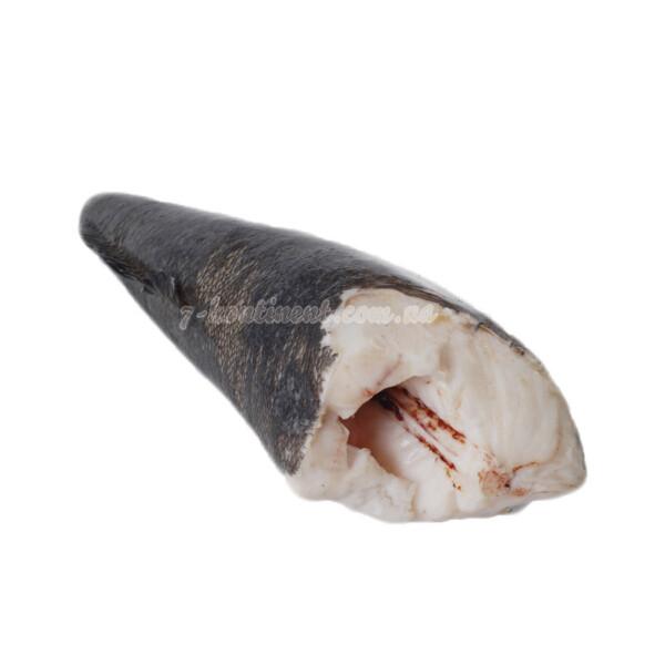 Патагонский клыкач. Чилийский сибас. Купить Чилийский сибас.